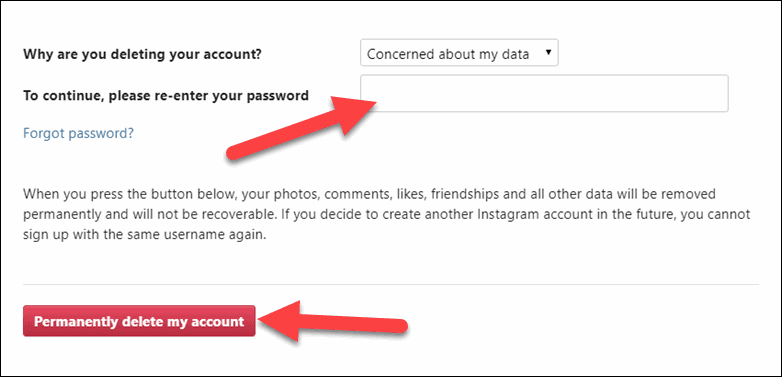 Re Enter your password and Permanently delete Account