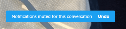 Notifications Muted for this conversation or Undo