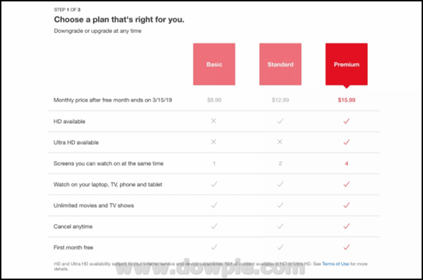 Streaming on Netflix Requires a Subscription Plan