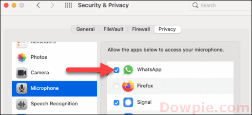Select Microphone and Check the Checkbox of WhatsApp